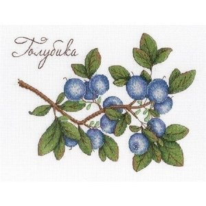 MPStudia MPstudia borduurpakket Blueberries SNV-617