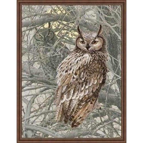 Riolis Riolis borduurpakket Eagle Owl 0038