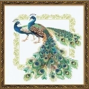 Riolis Riolis Peacocks 767