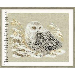 Riolis Riolis borduurpakket White Owl 1241
