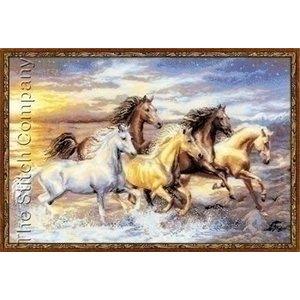 Riolis Riolis borduurpakket In the Sunset 100 038