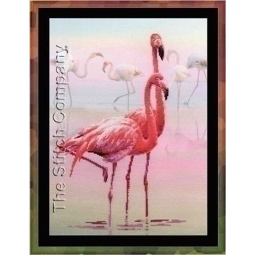 Riolis Riolis borduurpakket flamingo PT0012