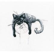RTO borduurpakket Among Black Cats m00666