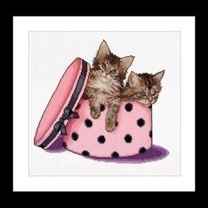 Thea Gouverneur Thea Gouverneur Kitten twins 734A