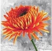 Needleart Voorbedrukt borduurpakket Orange Dahlia nc450-017