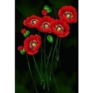 Needleart Needleart Red Poppies on Black 650.011