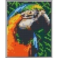 Pixelhobby XL Geschenkset 4 platen Papegaai 28023