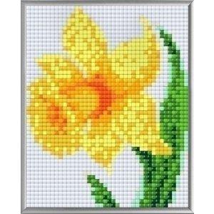PixelHobby Pixelhobby XL Geschenkset 4 platen Narcis 28018