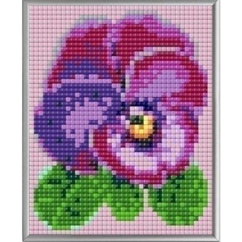 PixelHobby Pixelhobby XL Geschenkset 4 platen Viooltje 28017