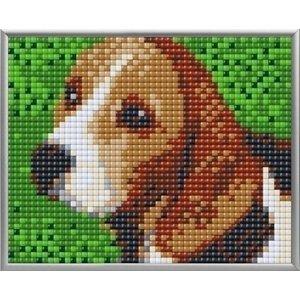 PixelHobby Pixelhobby XL Geschenkset 4 platen Beagle 28019