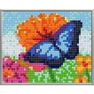 PixelHobby Pixelhobby XL Geschenkset 4 platen Blauwe Vlinder