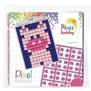 PixelHobby Pixelhobby medaillon startset Varkentje