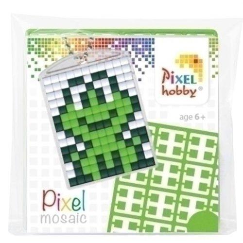 PixelHobby Pixelhobby medaillon startset Kikker
