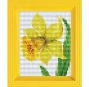 PixelHobby Pixelhobby Geschenkverpakking Narcis 31281
