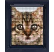 PixelHobby Pixelhobby Geschenkverpakking Kitten 31327