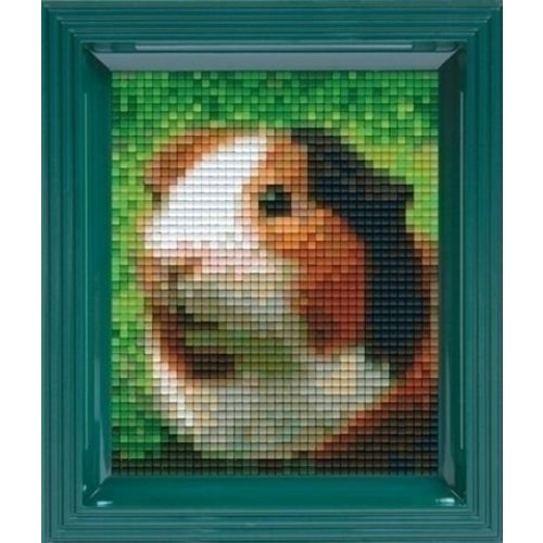 PixelHobby Pixelhobby Geschenkverpakking Cavia 31325