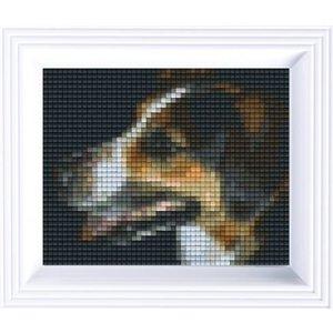 PixelHobby Pixelhobby geschenkset Jack Russel 31168