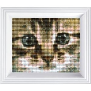 PixelHobby Pixelhobby geschenkverpakking Poezenblik 31179