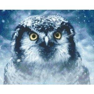 PixelHobby Pixelhobby Patroon 5580 Mystic Owl