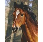PixelHobby Pixelhobby Patroon 816195 Paard