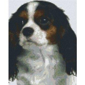 PixelHobby Pixelhobby patroon 804208 Cavalier King Charles