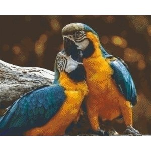 PixelHobby Pixelhobby patroon 5576 Love Birds