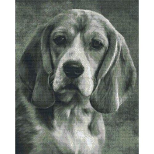 PixelHobby Pixelhobby Patroon 816229 Beagle zwart wit