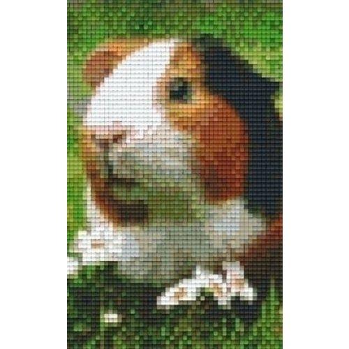 PixelHobby Pixelhobby patroon 802099 Cavia