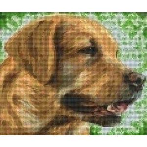 PixelHobby Pixelhobby patroon 806157 Labrador