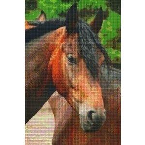 PixelHobby Pixelhobby patroon 830032 Bruin Paard