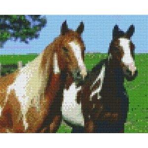PixelHobby Pixelhobby patroon 804129 Twee paarden