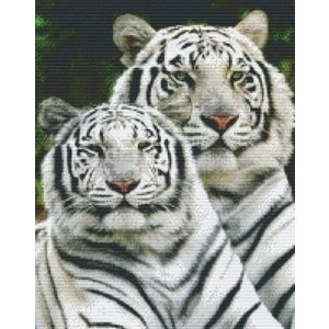 PixelHobby Pixelhobby patroon 816111 Twee witte tijgers