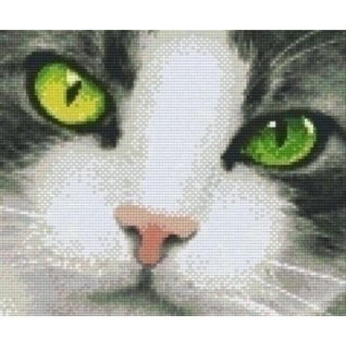 PixelHobby Pixelhobby patroon 806142 Kattenblik Groen