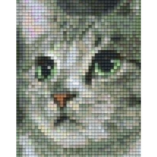 PixelHobby Pixelhobby patroon 801326 Kat