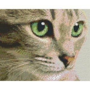 PixelHobby Pixelhobby patoon 804438 Kat met groene ogen