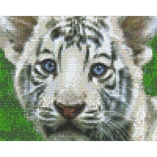 PixelHobby Pixelhobby patroon 804469 Witte baby tijger