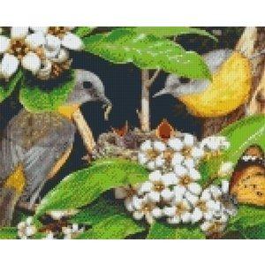 PixelHobby Pixelhobby patroon 5366 Vogels