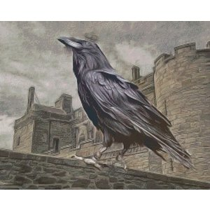 PixelHobby Pixelhobby patroon 5504 Black Crow