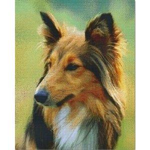 PixelHobby Pixelhobby patroon 836035 Shetland dog