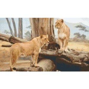 PixelHobby Pixelhobby patroon 5340 Leeuwen