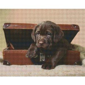 PixelHobby Pixelhobby patroon 836037 Puppy in koffer