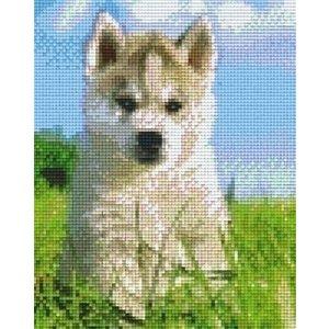 PixelHobby Pixelhobby patroon 804270 Husky pup