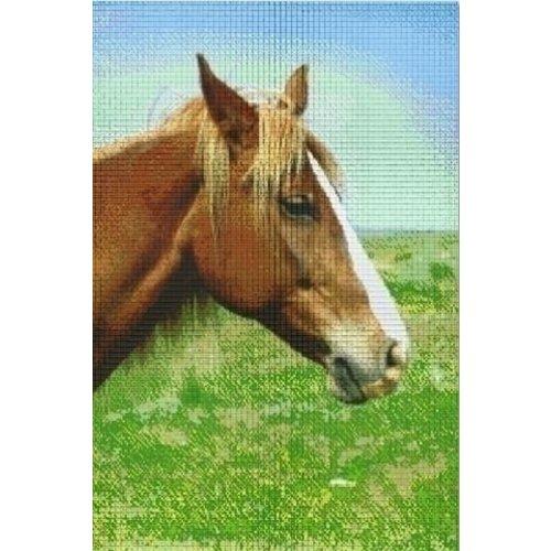 PixelHobby Pixelhobby Patroon 830039 Paard