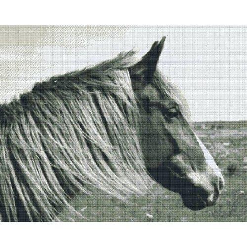 PixelHobby Pixelhobby patroon 836039 Paard zwart wit