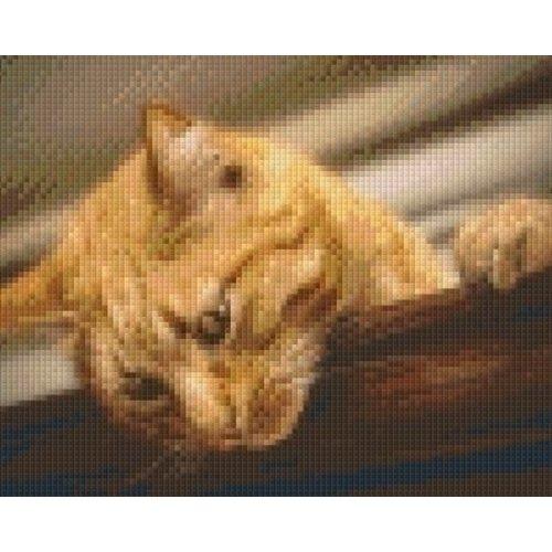 PixelHobby Pixelhobby patroon 5571 Rode Kat