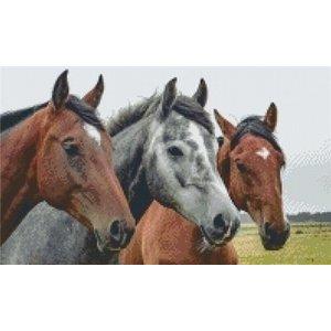 PixelHobby Pixelhobby patroon 5266 Paarden