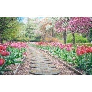 PixelHobby Pixelhobby patroon 5481 Tulpen in het Park