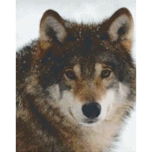 PixelHobby Pixelhobby patroon 5448 Wolf
