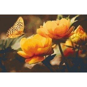 PixelHobby Pixelhobby patroon 5442 Gele vlinder op bloem