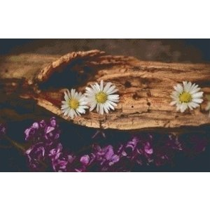 PixelHobby Pixelhobby patroon 5406 Bloemen op oud hout